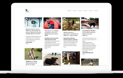 Lobodescafeinado - Diseño Web WordPress+WooCommerce Valencia